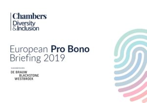 European Pro Bono Briefing Cover